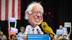 Bernie Birdie_Sanders_-_The_Canary_in_the_Coalmine_of_Democracy_(25765578730)